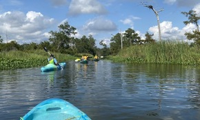 Multiple people canoeing in body of water